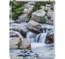 The Rushing Waters of Myrtle Falls iPad Case/Skin