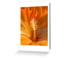 Flaming Hibiscus Greeting Card