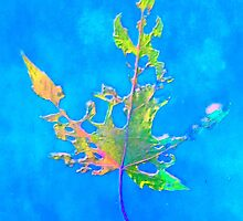 Somebody had Leaf for Lunch – Blue One by Mike Solomonson
