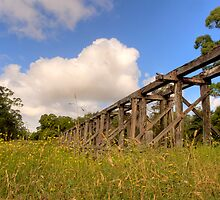 Rail Bridge by trevorb