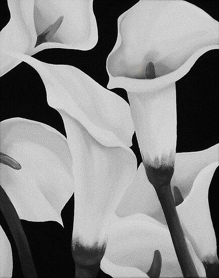 CALLA LILIES MONOCHROME ~ OIL ON CANVAS by LacewingDesign