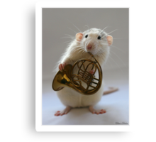 French horn. Canvas Print