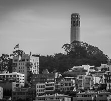 Coit Tower View from San Francisco's Waterfront by Nicole Petegorsky