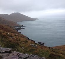 Ireland - Ring of Beara by soulimages