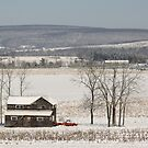 The Fields are White with Snow by M-EK