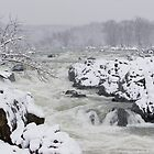 Snowstorm at Great Falls, VA by John Wright