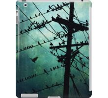 Bird City iPad Case/Skin