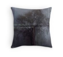 Photo 1.4: The Willow Wept Throw Pillow