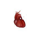 Heart! by Timmy Pottle