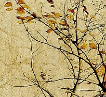 Nature Floral Print Collage in Warm Tones by DFLC Prints