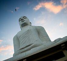 Lord Buddha's Statue by Mili Wijeratne