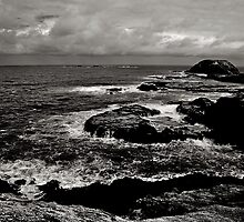 Waves on Rocks by Ashley Ng