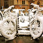 Snow covered bikes by Lynette Dobson