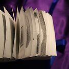 Artist's book - Jeux de Construction - Part II - by Pascale Baud