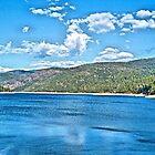 Lyon's Lake by Ed Moore