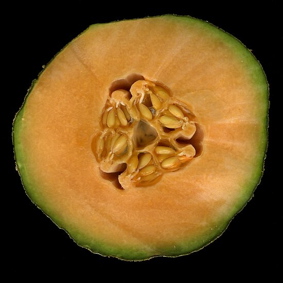 Cantalope by Jeffrey  Sinnock