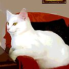 Big Lucy's Favorite Chair by hickerson