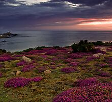 Distant Corbiere by Mark Bowden