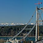 Tacoma Narrows & the Olympics by Bryan Peterson