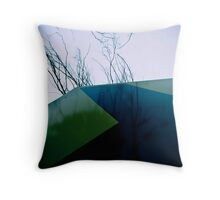 Whatever happens keep to the right... Throw Pillow