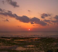 """Break-A-Leg"" Sunset at the Junkyard by Michael Powell"