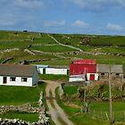 Rural Ireland by Gerard  Horan