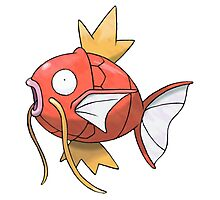 POKEMON MAGIKARP Photographic Print