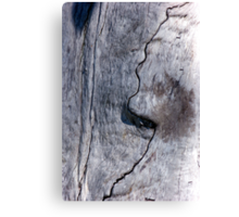 Profile in Wood Canvas Print