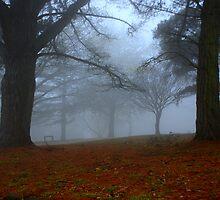 Fog Bound by KeepsakesPhotography Michael Rowley