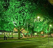St Kilda Road , Melbourne, at Midnight  by Tom Newman
