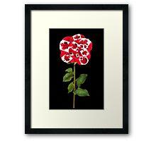 இڿڰۣ-ڰۣ— CANADIAN PATRIOTIC ROSE PICTURE/CARD இڿڰۣ-ڰۣ— Framed Print