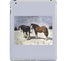 Chance of Flurries iPad Case/Skin