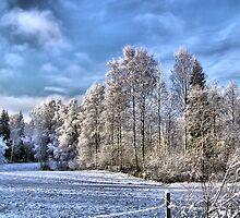 Winter 2 by Annika Strömgren