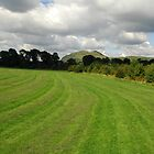 Clan: Arthurs Seat, from Portobello Park, Edinburgh by Clan