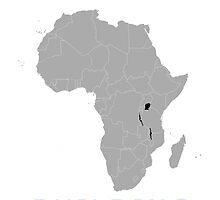 Africa by Peace & Love