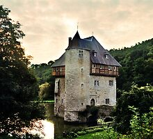Belgian Castle by Alison Cornford-Matheson