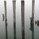 Old Piling Reflections 3 by marybedy