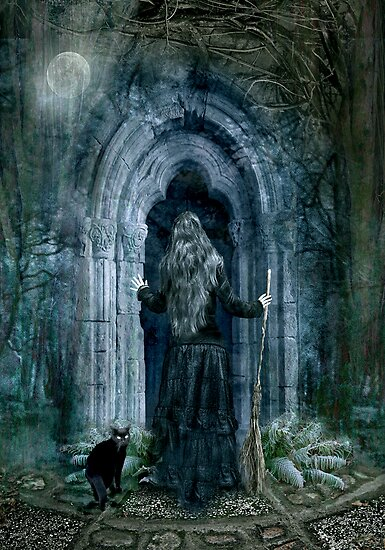 The Magic Door by Angie Latham