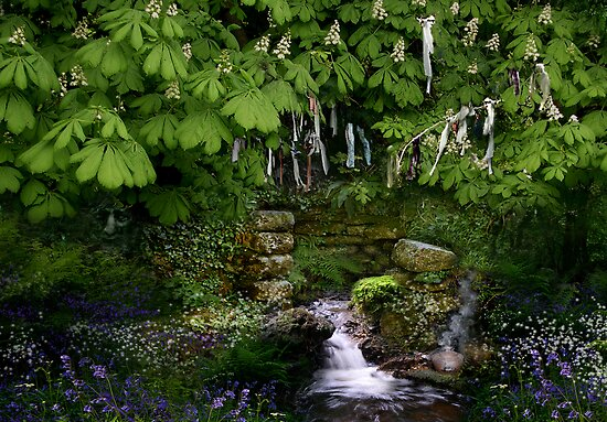 Cornish Holy Well by Angie Latham