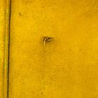 yellow by aska2
