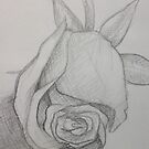 Rose Sketch by Dani Louise Sharlot