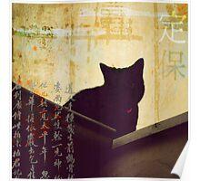 { black cat } Poster