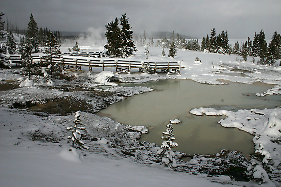 Yellowstone in Winter by Patricia Montgomery