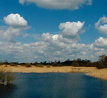 The Great Fen by James Stevens