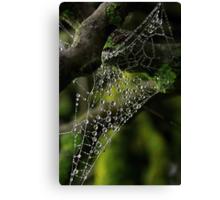 Web drops Canvas Print
