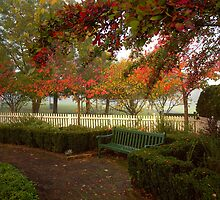 Autumn arrives by Rosalie Dale