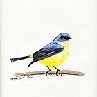 Eastern Yellow Robin by Faye Doherty