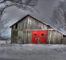 The Red Door by Maria Dryfhout