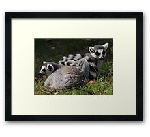 Wrapped Up In You Framed Print