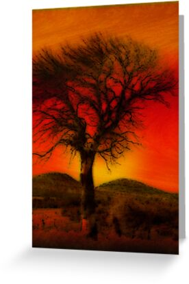 Oil Pastel Tree in Sunset (26,690) by Winona Sharp